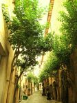 Tunel of Green. by Sanguinetti