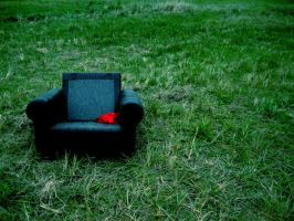 Story of the Chair by windily