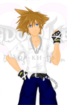 I Shrunk Soras Head by OP-KingdomHearts-DS