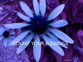 ..Count Your Blessings.. by lyndonovan