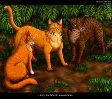 Squirrelpaw, Firestar and Brambleclaw by Vialir