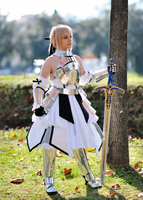 Saber Lily 2nd shot by Sandman-AC