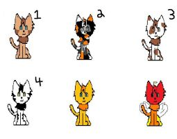apprentice cat adoptables1 by thenextbest
