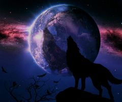 Wolf Howling by kigents