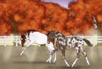 Fall Foals by CasablancaStudios