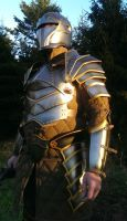 KnightArmour5 by DragonArmoury