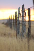 Fence at sunset 2 by akaleus