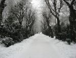 Snow Filled Alley by skyleaf-stock