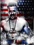 US Champion Sheamus by thetrans4med