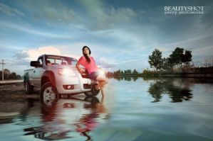 Aquaplaning Driving by perigunawan