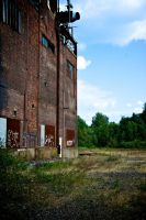 Abandoned Factory - 52 by The-Playmobil
