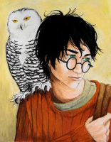 Harry and Hedwig by uknow-who