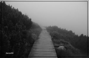 Road to nowhere - Fog by Jarovit6