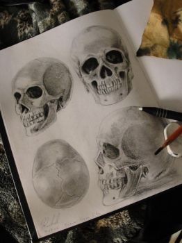 Skull Practice by that7one7chick7