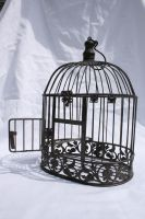 Birdcage 3 by tsb-stock