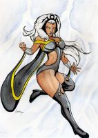storm by camillo1988