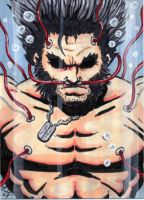 Weapon X Sketch Card by Artassassin