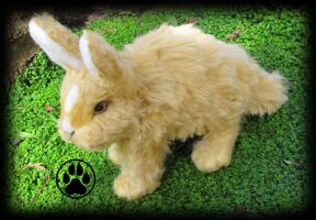 SOLD Bunny commission poseable artdoll. by CreaturesofNat