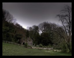 Dinefwr Castle (and grounds) XXII by Waeffe