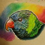 Rainbow bird by remanere