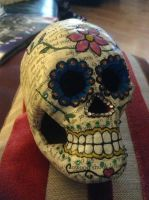 Day of the Dead Skull 1 by jazzyjazz666