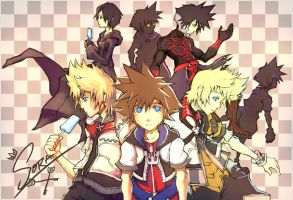 Too Many Soras by sk-sammy-joe