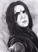 10 MINUTE SNAPE by SCT-GRAPHICS