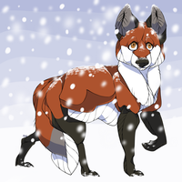 Winter Fox by tinydoodles