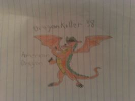 my firths american dragon pic by dragonkiller38