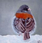 Junco by WendyMitchell