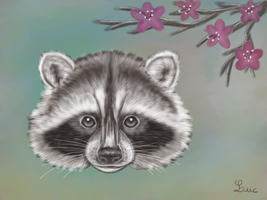 Raccoon Face Painting by Tom437
