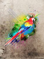 Parrot by Geodium