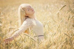 Fields of Gold by Liancary-Stock