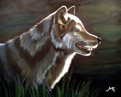 Gray Wolf by HungryxHungryxHippos