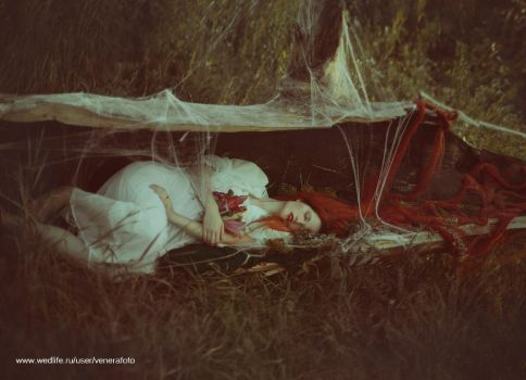 deep, deep in the woods by chervona