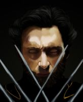 wolverine Painting by Averageguyuk