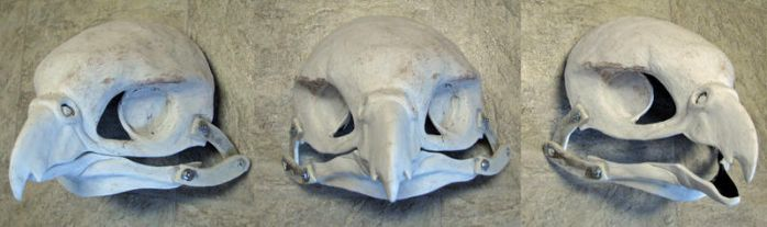 2016 falcon mask blank! by Crystumes