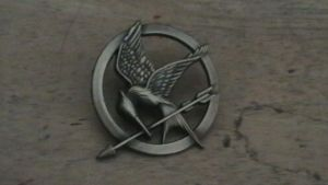 Hunger Games Pin by Indonesia-chan
