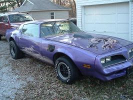 1977 Trans Am Glamourized by Theo-Kyp-Serenno
