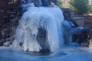 Natural Sculpture by IcePanthress