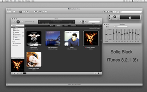 Soliq Black iTunes 8.2.1 - 6 by IanWoods