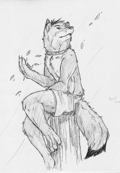 Commish  Quiet Time by TodwolfMalachi