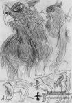 Quick griffin sketch dump by 1sidedownand2up