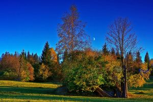 Autumn Evening by lica20