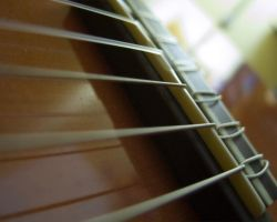 Guitar Stock - 3 by DrZapp