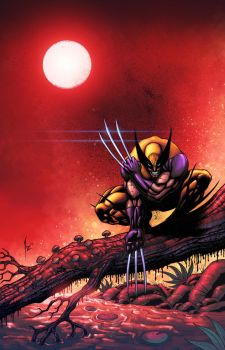 WOLVERINE by NesTHORcolors