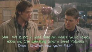 Supernatural - Season 6 funny by BaDBuNnYyY