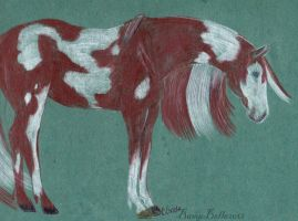 Pinto Pony by BamaBelle2012