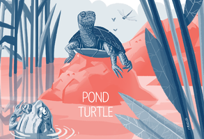 European Pond Turtle by nonamefox