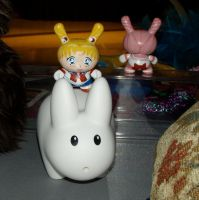 Sailor Moon Dunny and labbit by mesmithy